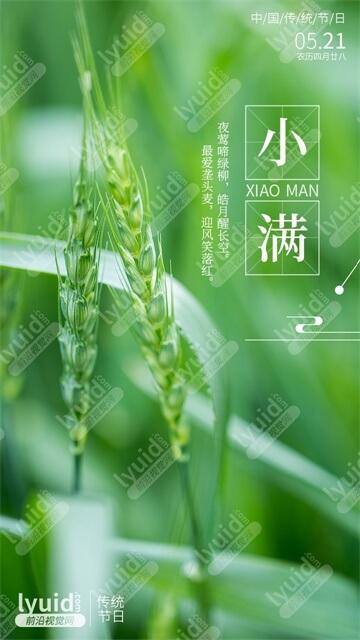 小满中国传统二十四节气海报设计专业节气海报设计(平面设计,海报设计就找前沿视觉网(lyuid.com)联系QQ:1297335737、联系微信:w1297335737)